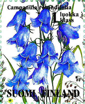 Harebell  Print by Lanjee Chee