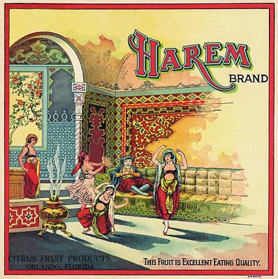 Harem Vintage Fruit Packing Crate Label C. 1920 Art Print