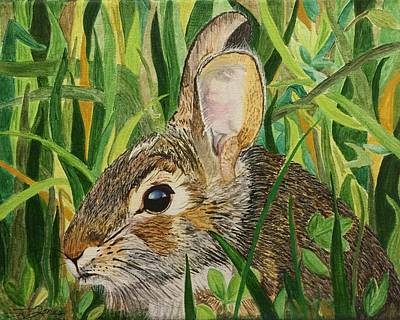 Painting - Hare's Breath by Sonja Jones