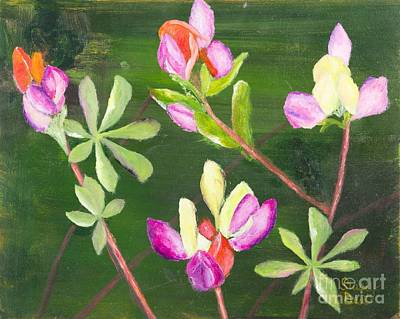 Sequoia National Park Painting - Harlequin Lupine In Sequoia National Park by Stacey Best