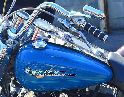 Photograph - Harley Blue Tank by Kimberly-Ann Talbert