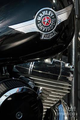 Photograph - Harley Davidson 10 by Wendy Wilton