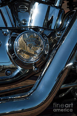 Photograph - Harley Davidson 18 by Wendy Wilton