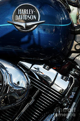 Photograph - Harley Davidson 20 by Wendy Wilton