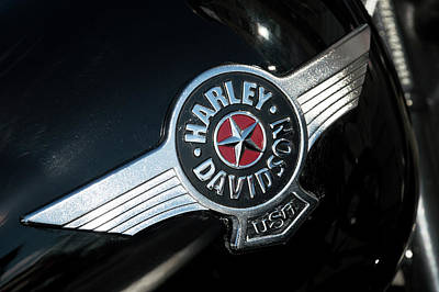 Harley Davidson 9 Art Print by Wendy Wilton
