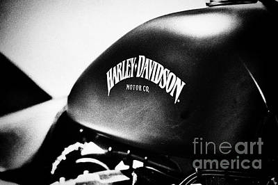 Sportster Photograph - Harley Davidson Iron 883 by Tim Gainey