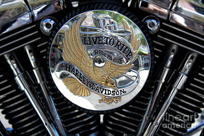 Photograph - Harley Davidson Live To Ride by Carlos Diaz