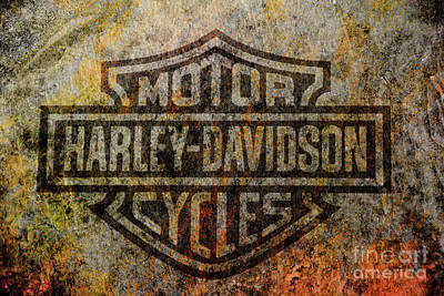 Harley Davidson Logo Grunge Metal Art Print by Randy Steele