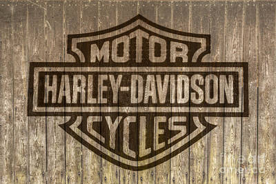 Transportation Royalty-Free and Rights-Managed Images - Harley Davidson Logo on Wood by Randy Steele