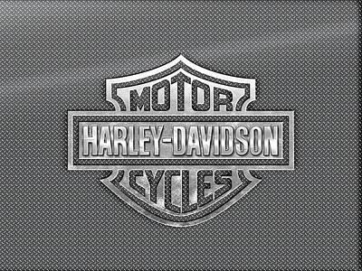 Photograph - Harley Davidson Metal Logo by Carlos Diaz