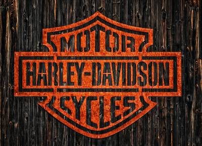 Photograph - Harley Davidson Motorcycles 11 by Jean Francois Gil
