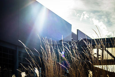 Photograph - Harley Davidson Museum Late Afternoon by Jeanette Fellows