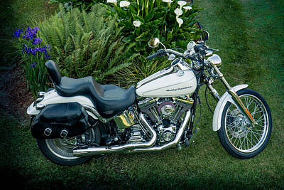Photograph - Harley-davidson Softail Deuce 2004 by E Faithe Lester