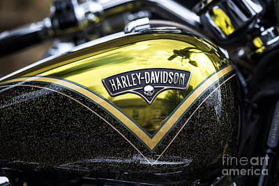 Chrome Skull Photograph - Harley Gold by Tim Gainey