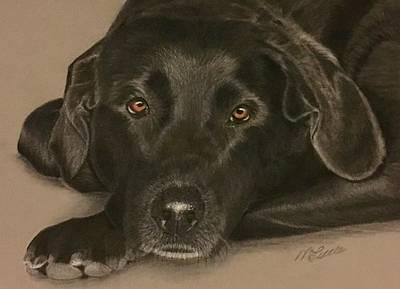 Rottweiler Dog Drawing - Harley by Marlene Little