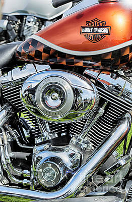 Custom Harley Davidson Photograph - Harley Softail  by Tim Gainey