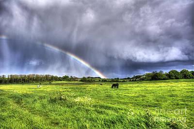Harlow Common Rainbow Art Print by Nigel Bangert