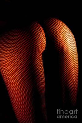 Photograph - Harmonious Pattern by Robert WK Clark