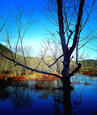 Harmony At Rumford Center Art Print