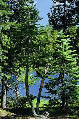 Harmony In Green And Blue - Manzanita Lake - Lassen Volcanic National Park Ca Art Print