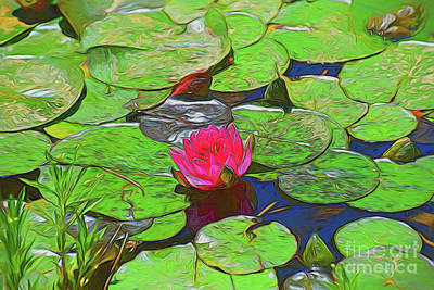 Photograph - Harmony - Lily Pads, Lily Flower - Frog - Pond 11518 by Ray Shrewsberry