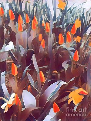 Photograph - Harmony Of Spring - Orange Persuasion by Miriam Danar