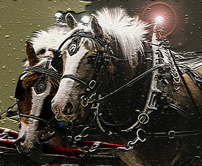 Digital Art - Harness Horses In Winter by Joyce Wasser