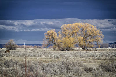 Romantic French Magazine Covers - Harney County by Belinda Greb