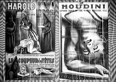 Photograph - Harold And Houdini by John Rizzuto