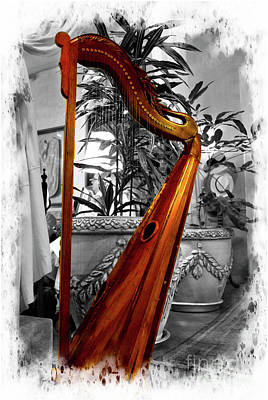 Photograph - Harp At Mansion Alcazar, Cuenca, Ecuador by Al Bourassa