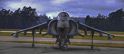 Harrier Art Print by Paul Owen