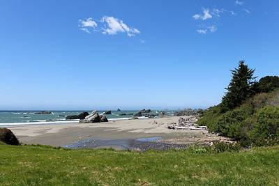 Photograph - Harris Beach State Park In Oregon - 2 by Christy Pooschke