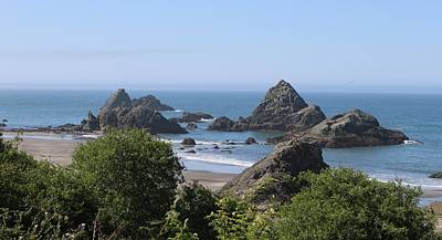 Photograph - Harris Beach State Park In Oregon - 6 by Christy Pooschke