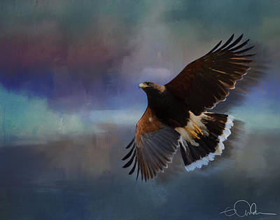 Digital Art - Harris Hawk by Gloria Anderson