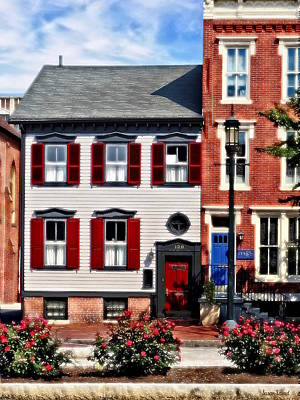 Photograph - Harrisburg Pa - Roses On State Street by Susan Savad