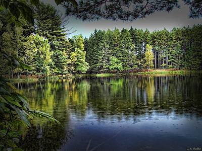Photograph - Hartman Creek State Park by Lauren Radke