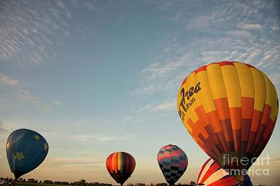 Photograph - Harvard Balloon Fest 14 by David Bearden
