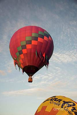 Photograph - Harvard Balloon Fest 20 by David Bearden