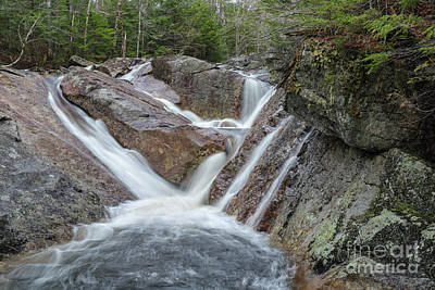 Photograph - Harvard Brook - White Mountains New Hampshire by Erin Paul Donovan