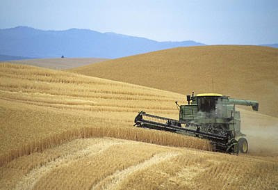 Photograph - Harvest And Moscow Mountain by Doug Davidson
