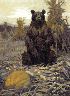 Painting - Harvest Bear by Philip R Goodwin