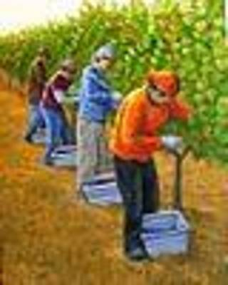 Grape Pickers Painting - Harvest Day by Patrick ORourke