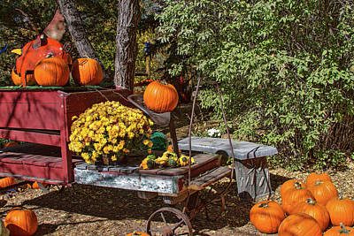 Photograph - Harvest Display by Alana Thrower