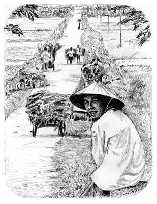 Drawing - Harvest In Mai Chao by Toon De Zwart