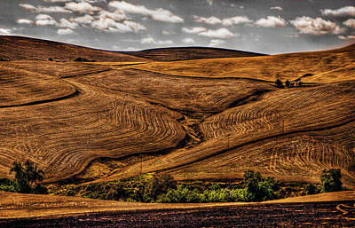 Photograph - Harvest by Ken Ketchum