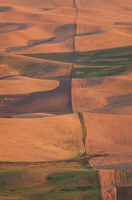 Photograph - Harvest Line by Michael Blanchette