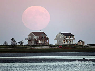 Photograph - Harvest Moon 2015 Sept 27 by Janice Drew
