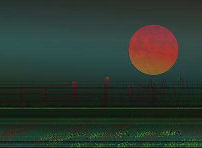 Harvest Moon Art Print by Amy Williams