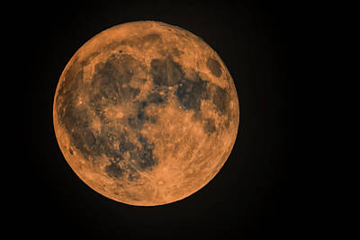 Photograph - Harvest Moon Of October 2017 by Eti Reid