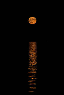 Photograph - Harvest Moonrise by Paul Freidlund